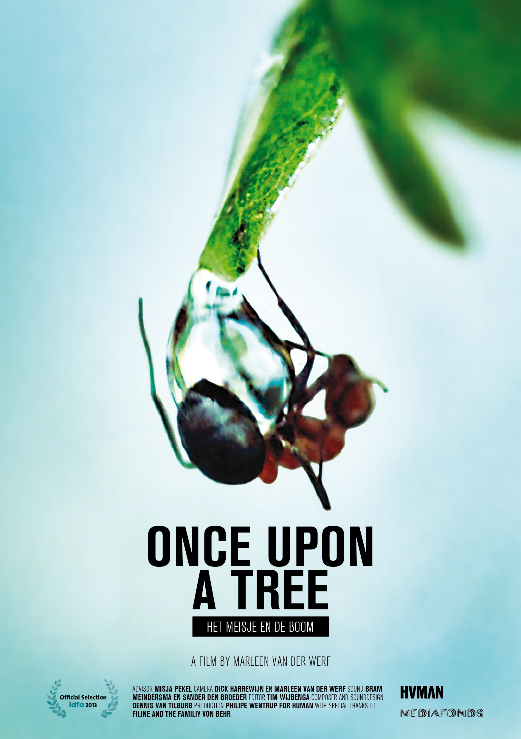 Flyer Once Upon a Tree - by Mara Vissers